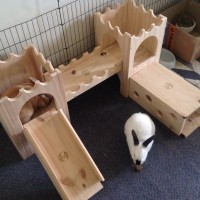 Constance and Billy Bunny love their Binky Castle