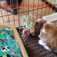 Millie playing with a fundae bunny toy from rabbit toys australia